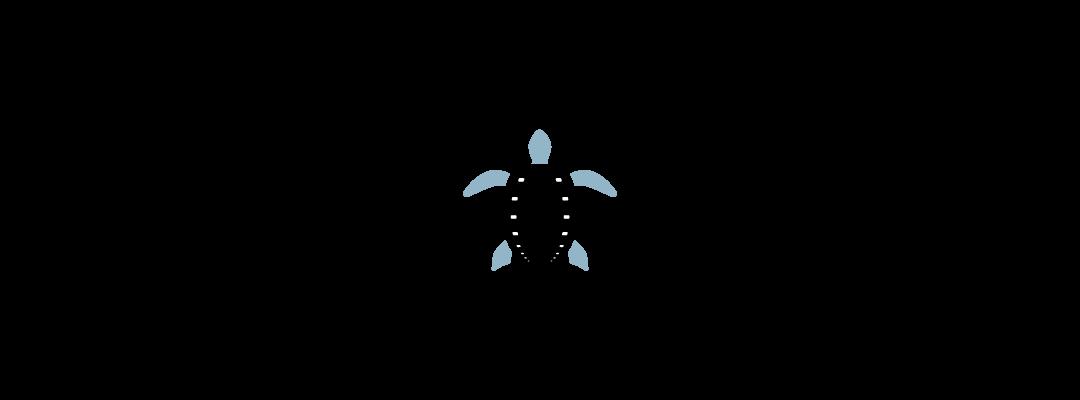 amphibitech logo design